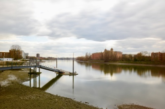 The Thames, Hammersmith