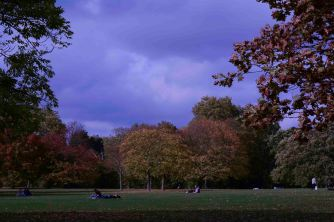 AutumnLeaves16.10_1