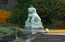 cagedsphinx